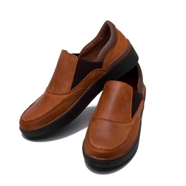 کفش دانشجویی